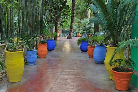 Walkway in Jardin Majorelle, Marrakech, Morocco Stock Photo - Rights-Managed, Code: 700-06038046
