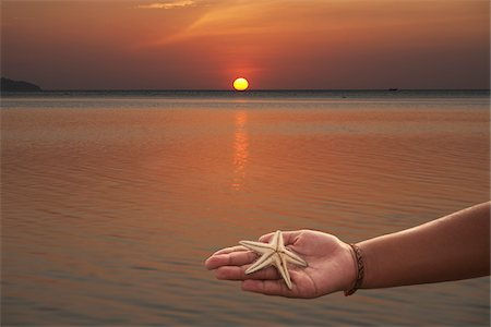 Person Holding Starfish in Hand, Pak Meng Beach, Trang, Thailand Stock Photo - Rights-Managed, Code: 700-06190517