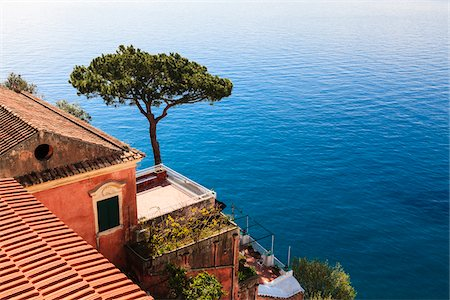 Tree and House on Coast of Mediterranean Sea, Positano, Campania, Italy Stock Photo - Rights-Managed, Code: 700-06355341