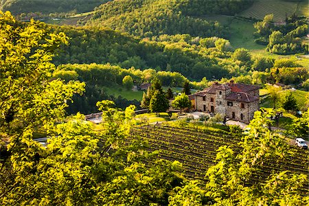 Farmhouse, Radda in Chianti, Tuscany, Italy Stock Photo - Rights-Managed, Code: 700-06367882