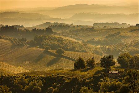 Farmland and Rolling Hills, San Gimignano, Siena Province, Tuscany, Italy Stock Photo - Rights-Managed, Code: 700-06367916