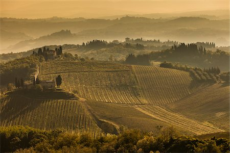 Farmland, San Gimignano, Siena Province, Tuscany, Italy Stock Photo - Rights-Managed, Code: 700-06367917