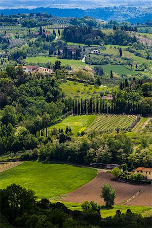 Overview of Farmland, San Miniato, Province of Pisa, Tuscany, Italy Stock Photo - Rights-Managed, Code: 700-06367966