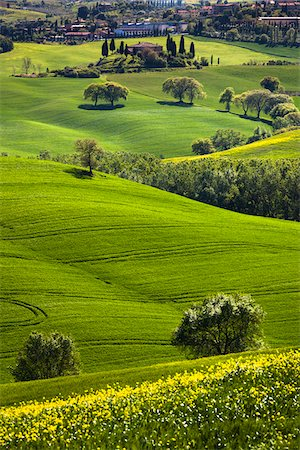 european hillside town - San Quirico d'Orcia, Siena, Tuscany, Italy Stock Photo - Rights-Managed, Code: 700-06368046