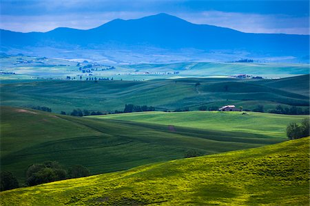Scenic of Valley, Val d'Orcia, Siena, Tuscany, Italy Stock Photo - Rights-Managed, Code: 700-06368047