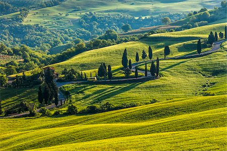Winding Road, Monticchiello, Val d'Orcia, Province of Siena, Tuscany, Italy Stock Photo - Rights-Managed, Code: 700-06368145