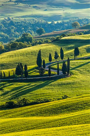 Winding Road, Monticchiello, Val d'Orcia, Province of Siena, Tuscany, Italy Stock Photo - Rights-Managed, Code: 700-06368146