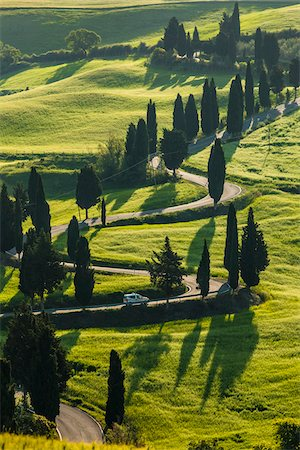 Winding Road, Monticchiello, Val d'Orcia, Province of Siena, Tuscany, Italy Stock Photo - Rights-Managed, Code: 700-06368147