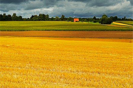 Barn and Farmland, near Villingen-Schwenningen, Black Forest, Schwarzwald-Baar, Baden-Wurttemberg, Germany Stock Photo - Rights-Managed, Code: 700-06368316