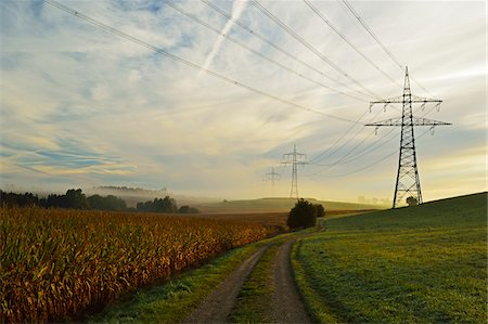 Country Road Running Between Farmland and Power Line, near Villingen-Schwenningen, Baden-Wurttemberg, Germany Stock Photo - Rights-Managed, Code: 700-06397549