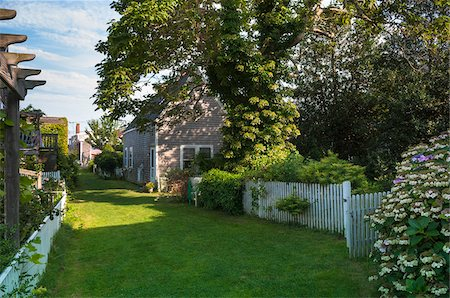 Gardens, Provincetown, Cape Cod, Massachusetts, USA Stock Photo - Rights-Managed, Code: 700-06439120