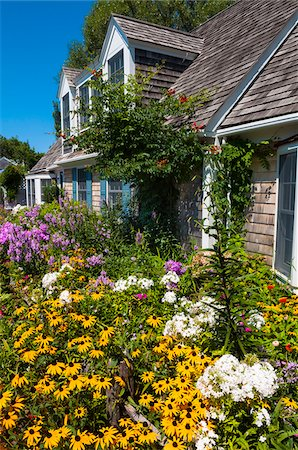 quaint house - House with Colorful Flower Garden, Provincetown, Cape Cod, Massachusetts, USA Stock Photo - Rights-Managed, Code: 700-06431221
