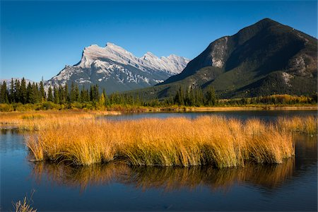 fall trees lake - Long Grass Growing in Vermilion Lakes with Mount Rundle and Sulphur Mountain, near Banff, Banff National Park, Alberta, Canada Stock Photo - Rights-Managed, Code: 700-06465462