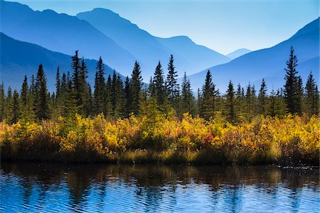Autumn Vegetation and Mountain Range at Vermilion Lakes, near Banff, Banff National Park, Alberta, Canada Stock Photo - Rights-Managed, Code: 700-06465463