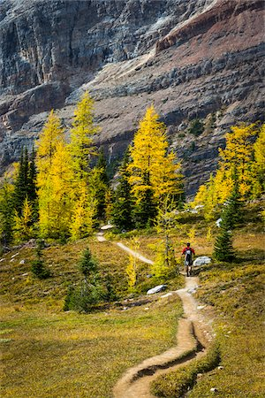 Man Hiking on Lake McArthur Trail in Autumn, Yoho National Park, British Columbia, Canada Stock Photo - Rights-Managed, Code: 700-06465534