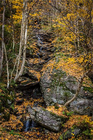 Boulder and Forest Stream in Autumn, Smugglers Notch, Lamoille County, Vermont, USA Stock Photo - Rights-Managed, Code: 700-06465620