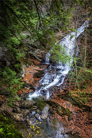 Waterfall and Evergreen Trees, Moss Glen Falls Natural Area, C.C. Putnam State Forest, Lamoille County, Vermont, USA Stock Photo - Rights-Managed, Code: 700-06465639