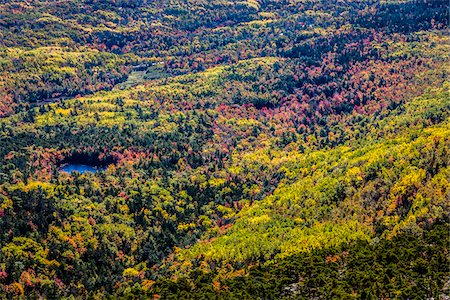 fall - View of Valley with Fall Colours as seen from Cadillac Mountain, Acadia National Park, Mount Desert Island, Hancock County, Maine, USA Stock Photo - Rights-Managed, Code: 700-06465704