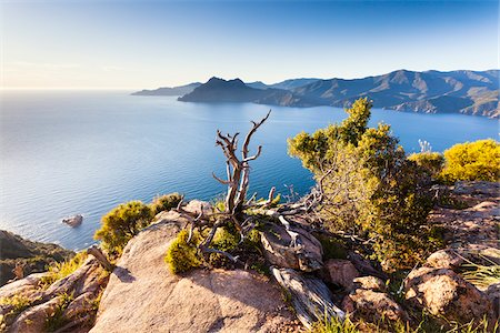Overview of Calanques de Piana, Corsica, France Stock Photo - Rights-Managed, Code: 700-06512747