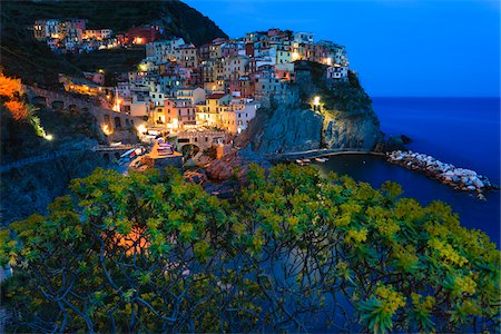 Blue hour at clifftop village of Manarola, Tree spurge (Euphorbia dendroides) in front of the village at dusk, Cinque Terre National Park, UNESCO World Heritage Site, Liguria, Italy Stock Photo - Rights-Managed, Code: 700-06512754