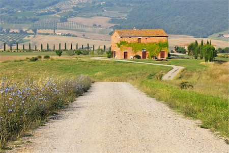 Dirt Road with Farmhouse in Summer, San Quirico d'Orcia, Province of Siena, Tuscany, Italy Stock Photo - Rights-Managed, Code: 700-06512907