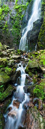 plant (botanical) - Burgbach waterfall in spring, Black Forest, Germany Stock Photo - Rights-Managed, Code: 700-06531532