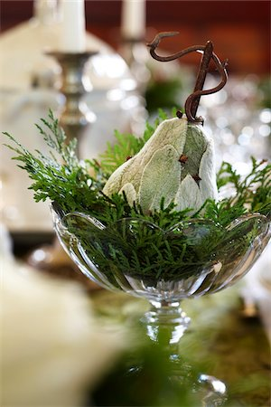 decorations - One decorative lambs ear pear in a dish with cedar branches used as a holiday table center piece Stock Photo - Rights-Managed, Code: 700-06532027
