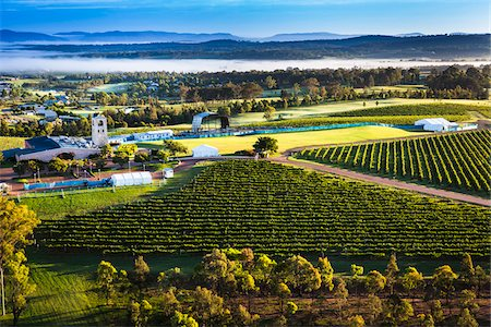 Aerial view of wine country near Pokolbin, Hunter Valley, New South Wales, Australia Stock Photo - Rights-Managed, Code: 700-06675097