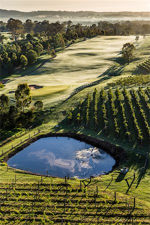Aerial view of a golf course and vineyards in wine country near Pokolbin, Hunter Valley, New South Wales, Australia Stock Photo - Rights-Managed, Code: 700-06675098
