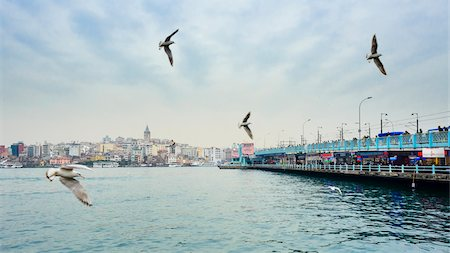 Turkey, Marmara, Istanbul, Galata Tower with Galata Bridge over Golden Horn, Gulls Flying in Foreground Stock Photo - Rights-Managed, Code: 700-06732689