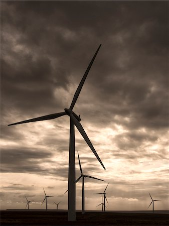 Scotland, Caithness, Causeymire Wind Farm, located at Achkeepster, a group of 21 wind turbines that became fully operational in 2004. Stock Photo - Rights-Managed, Code: 700-06773286