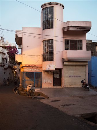 pink - Street view with cow at dusk in old quarter of Binda, India Stock Photo - Rights-Managed, Code: 700-06782157
