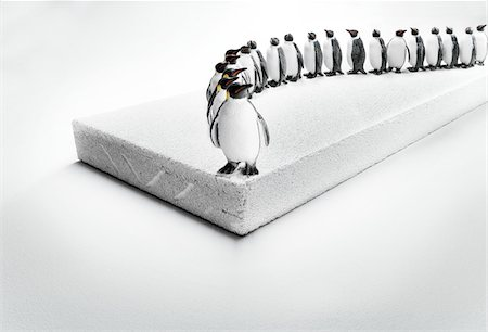 Row of penguin figurines on cinder block ice floe Stock Photo - Rights-Managed, Code: 700-06808755