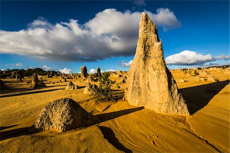 The Pinnacles, Nambung National Park, Western Australia, Australia Stock Photo - Rights-Managed, Code: 700-06841640