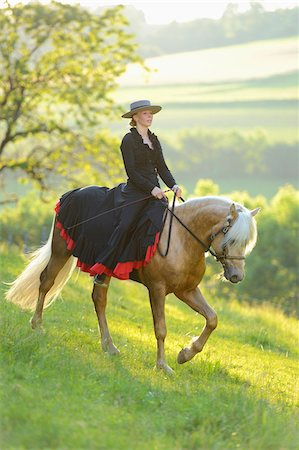 Woman Wearing Dress Riding a Connemara Stallion on a Meadow, Germany Stock Photo - Rights-Managed, Code: 700-06900024