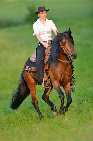 Young woman riding a Connemara stallion on a meadow, Germany Stock Photo - Rights-Managed, Code: 700-06900028