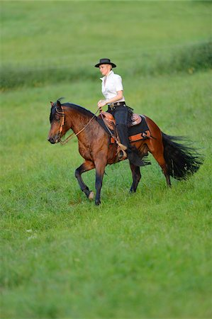 Young woman riding a Connemara stallion on a meadow, Germany Stock Photo - Rights-Managed, Code: 700-06900029