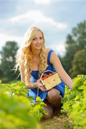 Young woman in a strawberryfield with a basket full of strawberries, Bavaria, Germany Stock Photo - Rights-Managed, Code: 700-06936099