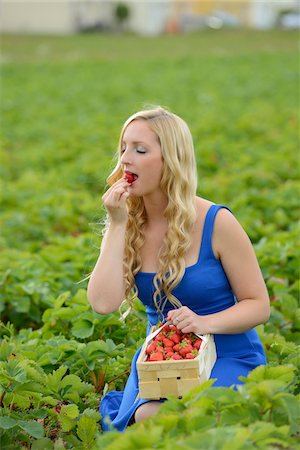 Young woman in a strawberryfield eating a strawberry, Bavaria, Germany Stock Photo - Rights-Managed, Code: 700-06936101
