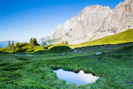 Grosse Scheidegg and Alpine lake, Grosse Scheidegg, Bernese Alps, Switzerland Stock Photo - Rights-Managed, Code: 700-06964174