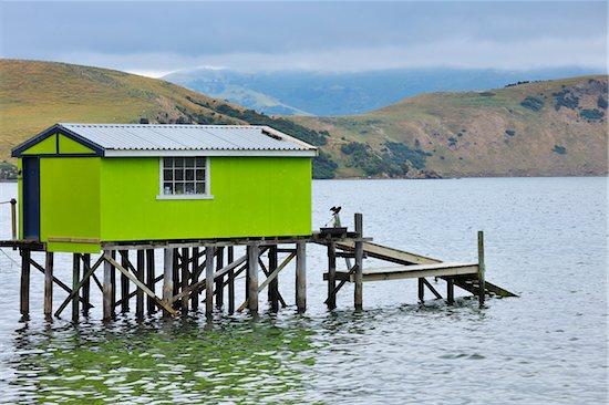Fishing Hut, Portobello, Otago Region, South Island, New Zealand Stock Photo - Premium Rights-Managed, Artist: Raimund Linke, Image code: 700-06964238