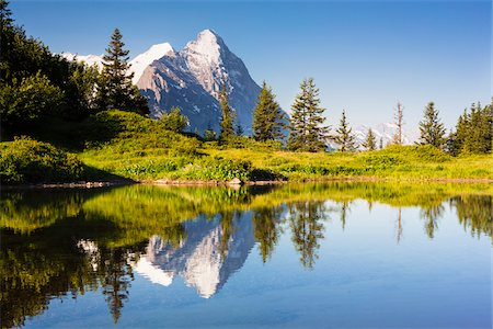 snow capped - Reflection of Eiger Peak in an Alpine Lake, Bernese Alps, Grosse Scheidegg, Canton of Bern, Switzerland Stock Photo - Rights-Managed, Code: 700-07026611