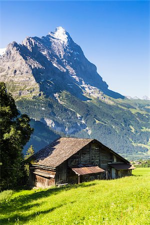 snow capped - Old Barn on Alpine Meadow in front of Mount Eiger, Bernese Alps, Switzerland Stock Photo - Rights-Managed, Code: 700-07066983