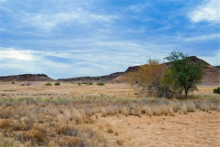 rugged landscape - Huab River Valley area, Damaraland, Kunene Region, Namibia, Africa Stock Photo - Rights-Managed, Code: 700-07067197
