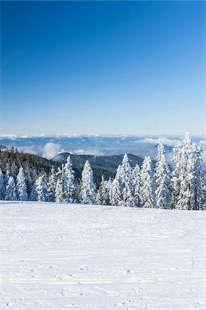picture - Mount Ashland Ski Resort, Southern Oregon, USA Stock Photo - Rights-Managed, Code: 700-07067225