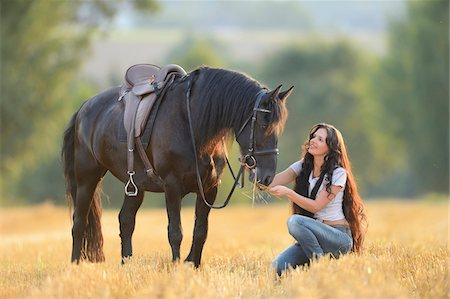Young woman kneeling beside a Friesian horse in a cut cornfield, Bavaria, Germany Stock Photo - Rights-Managed, Code: 700-07080476