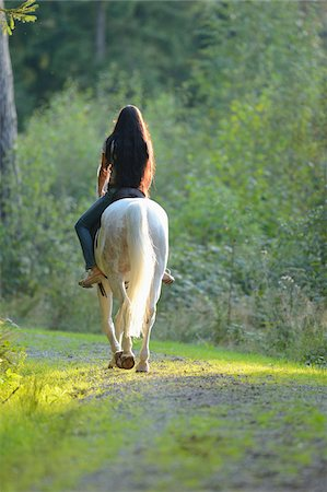 Back view of young woman riding a white, Bavarian Warmblood horse, Bavaria, Germany Stock Photo - Rights-Managed, Code: 700-07080472