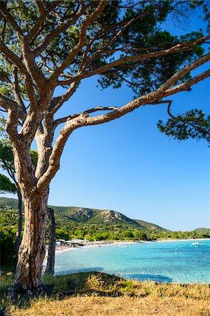 Coastal beach scene and ocean, Porto Vecchio, Palombaggia Beach, Palombaggia Nature Reserve, Corsica, France Stock Photo - Rights-Managed, Code: 700-07148227