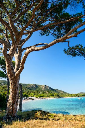 Coastal beach scene and ocean, Porto Vecchio, Palombaggia Beach, Palombaggia Nature Reserve, Corsica, France Stock Photo - Rights-Managed, Code: 700-07148227