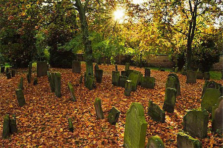 Sun through Trees in Jewish Cemetery, Worms, Rhineland-Palatinate, Germany Stock Photo - Rights-Managed, Code: 700-07202704
